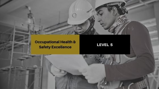 Occupational Health & Safety Excellence - Level 5